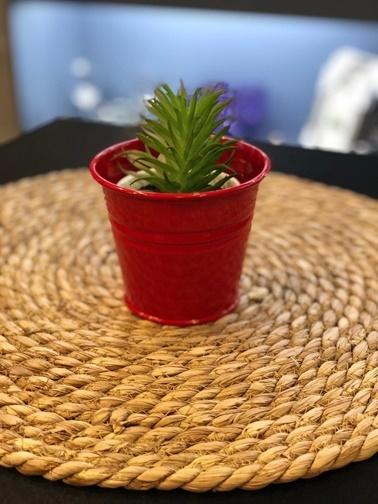 Naturel Galvaniz Mini Kova 11.5x9.5 Kırmızı Kırmızı